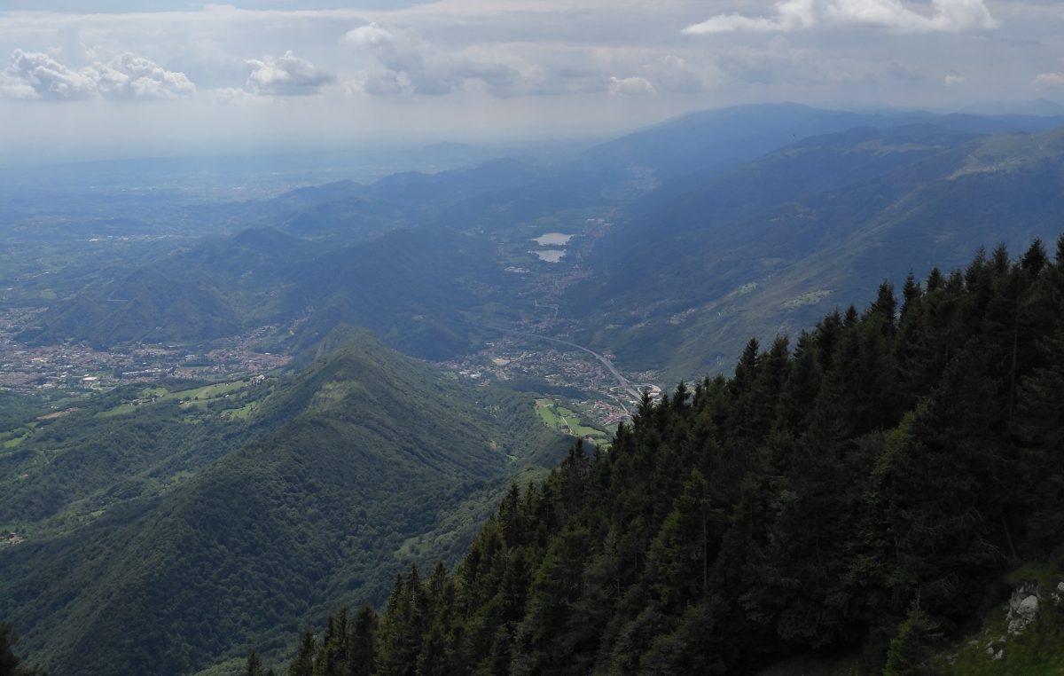 Estate in Cansiglio: GLI IMPERDIBILI EVENTI IN FORESTA