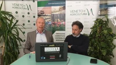 02 Radio Veneto Agricoltura – Agroforestazione