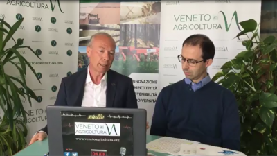 05 Radio Veneto Agricoltura – Riflettori sull'Ortofrutta Veneta
