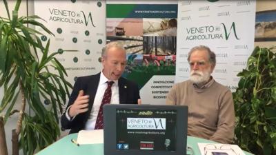 01 Radio Veneto Agricoltura – Vigneti resistenti