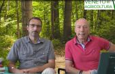09 Radio Veneto Agricoltura Bosco Nordio