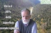 29 ottobre 2018, un disastro nel Veneto!