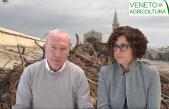30 Radio Veneto Agricoltura – L'onda lunga del maltempo sulla costa