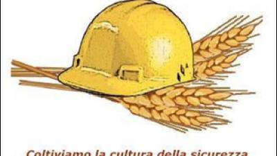 Aggiornamento RSPP – Sicurezza sul lavoro in agricoltura: FONTI DI RISCHIO SPECIFICHE DELL'ATTIVITA' LAVORATIVA NEL SETTORE PRIMARIO (cod.7-19)