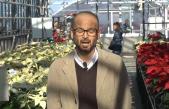 """Giornata tecnica """"Poinsettia"""" (stelle di Natale) – 200 varietà a confronto"""