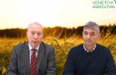33 Radio Veneto Agricoltura – Agricoltura e assicurazione