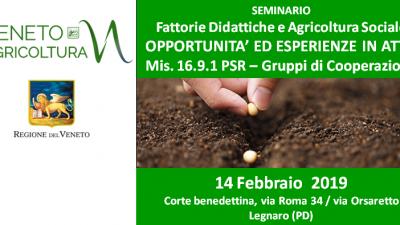 Fattorie Didattiche e Agricoltura Sociale OPPORTUNITA' ED ESPERIENZE IN ATTO – Mis 16.9 PSR