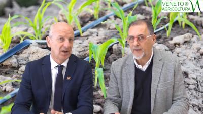 39 Radio Veneto Agricoltura – Il punto sull'agricoltura veneta con l'assessore Pan