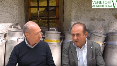 45 Radio Veneto Agricoltura – Latte, nel Veneto si fa sul serio