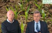 44 Radio Veneto Agricoltura – Fitofarmaci si, fitofarmaci no?