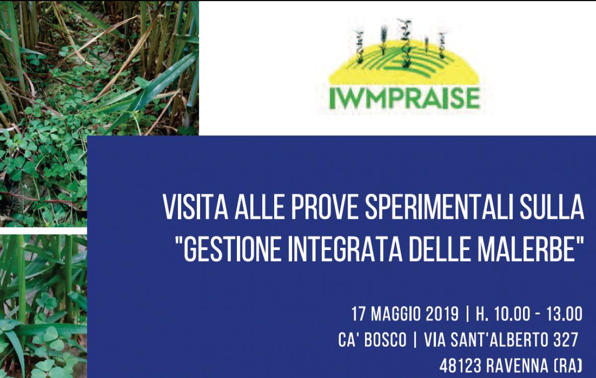 Giornata dimostrativa a Ravenna – 17 maggio 2019