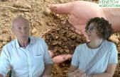 59 Radio Veneto Agricoltura – Report sull'andamento del comparto agroalimentare veneto nel 2018