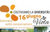 Giornata dimostrativa all'Azienda Agricola La Viola di Torre San Patrizio (FM)