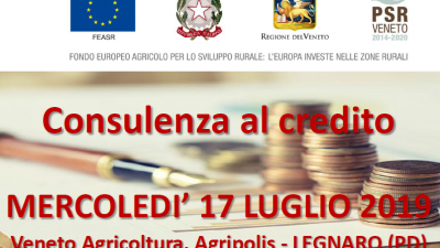 Consulenza al credito (cod. 2A-28-19)