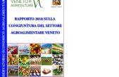 Rapporto 2018 sulla congiuntura del settore agroalimentare veneto