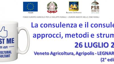 La consulenza e il consulente: approcci, metodi e strumenti (2° edizione)