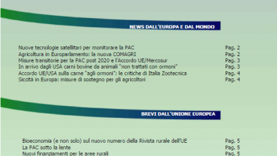 Veneto Agricoltura Europa n. 8/2019