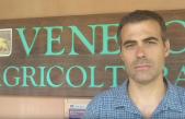 Il punto sulla cimice asiatica con il Prof. Alberto Pozzebon del Dipartimento DAFNE dell'Università di Padova (in attesa della puntata di approfondimento di Radio Veneto Agricoltura)
