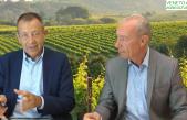 65 Radio Veneto Agricoltura – Vendemmia 2019 ai Raggi X