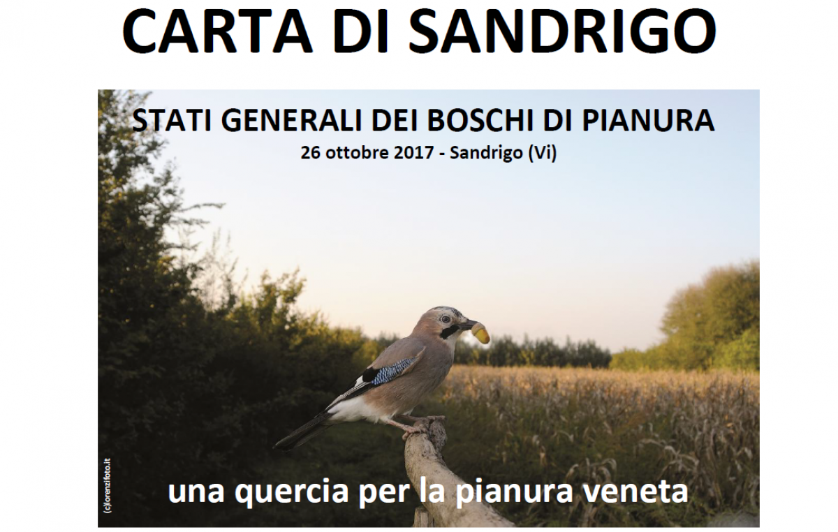 Carta di Sandrigo e Stati generali dei boschi di pianura