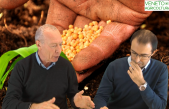 73 Radio Veneto Agricoltura – Prezzi e Mercati