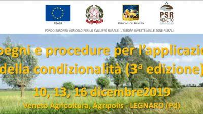 Impegni e procedure per l'applicazione della condizionalità (3a edizione) – cod.P4-05-19