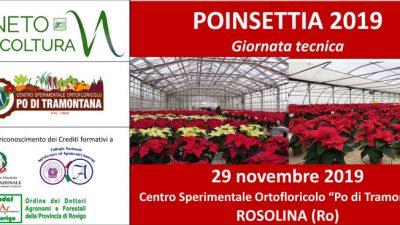 Poinsettia 2019 – Giornata tecnica