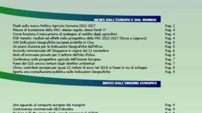 VENETO AGRICOLTURA EUROPA N. 13/2019