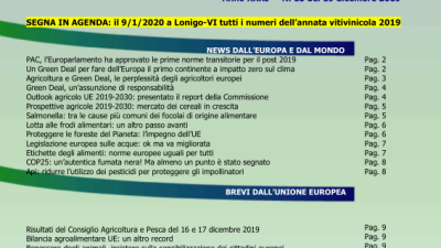 VENETO AGRICOLTURA EUROPA N. 15/2019