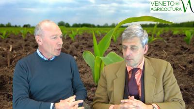 80 Radio Veneto Agricoltura – Come ridurre la chimica in agricoltura