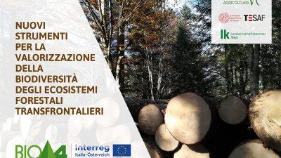 Nuovi strumenti per la valorizzazione della biodiversità degli ecosistemi forestali transfrontalieri
