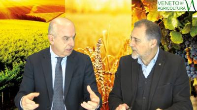 85 Radio Veneto Agricoltura – Incontro con il nuovo direttore di Coldiretti Veneto, Tino Arosio