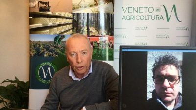 90 Radio Veneto Agricoltura – Florovivaismo in ginocchio