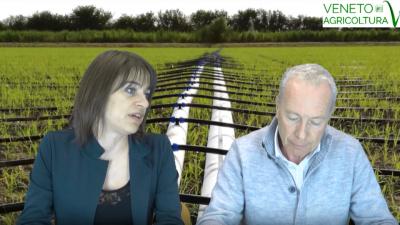 86 Radio Veneto Agricoltura – Statistica in Agricoltura