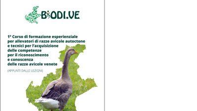 1° Corso esperienziale per allevatori di razze avicole autoctone e tecnici per l'acquisizione delle competenze per il riconoscimento e conoscenza delle razze avicole venete (Appunti dalle lezioni)