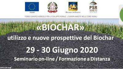"""""""BIOCHAR"""": utilizzo e nuove prospettive (cod.P4-21-20)"""