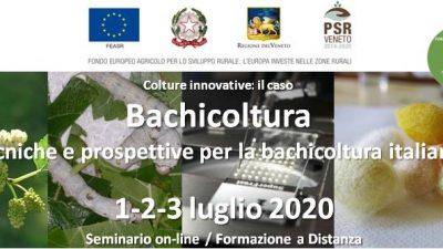 Colture innovative: il caso bachicoltura