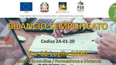 Bilancio semplificato (cod.2A-01-20)