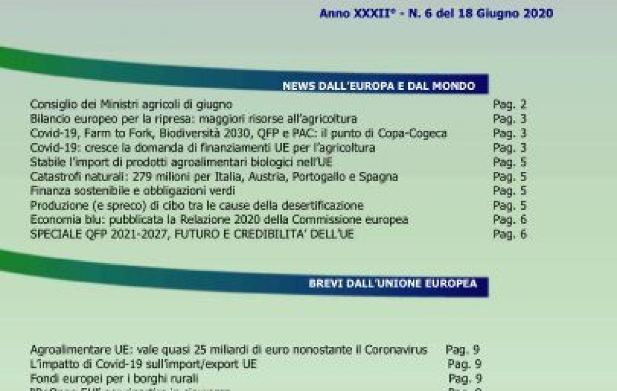 Veneto Agricoltura Europa n. 6/2020