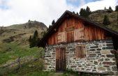 FORESTA DI MALGONERA (BL): MODELLO DI RICOSTITUZIONE BOSCHIVA POST VAIA