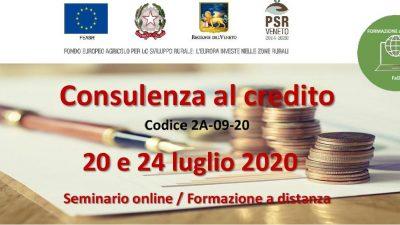 Consulenza al credito (cod.2A-09-20)