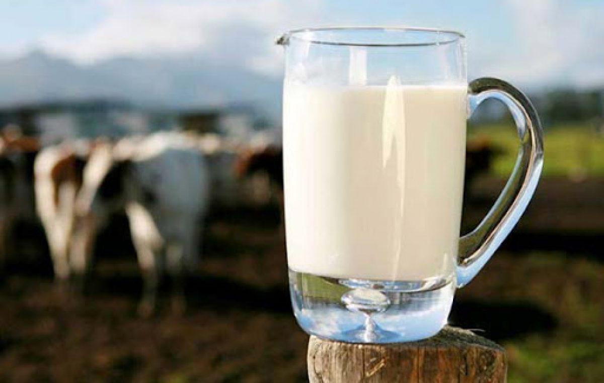 Periodo difficile per il latte veneto