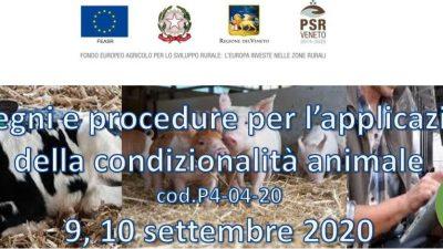Impegni e procedure per l'applicazione della condizionalità animale