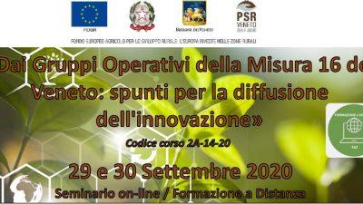 Dai Gruppi Operativi della Misura 16 del Veneto: spunti per la diffusione dell'innovazione