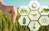 QUALE AGRICOLTURA DOPO IL LOCKDOWN? IL FUTURO (VERDE) PRESENTATO DA VENETO AGRICOLTURA