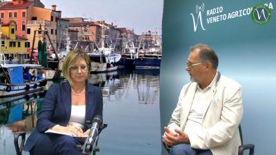Fermo pesca e futuro delle marinerie nell'alto adriatico
