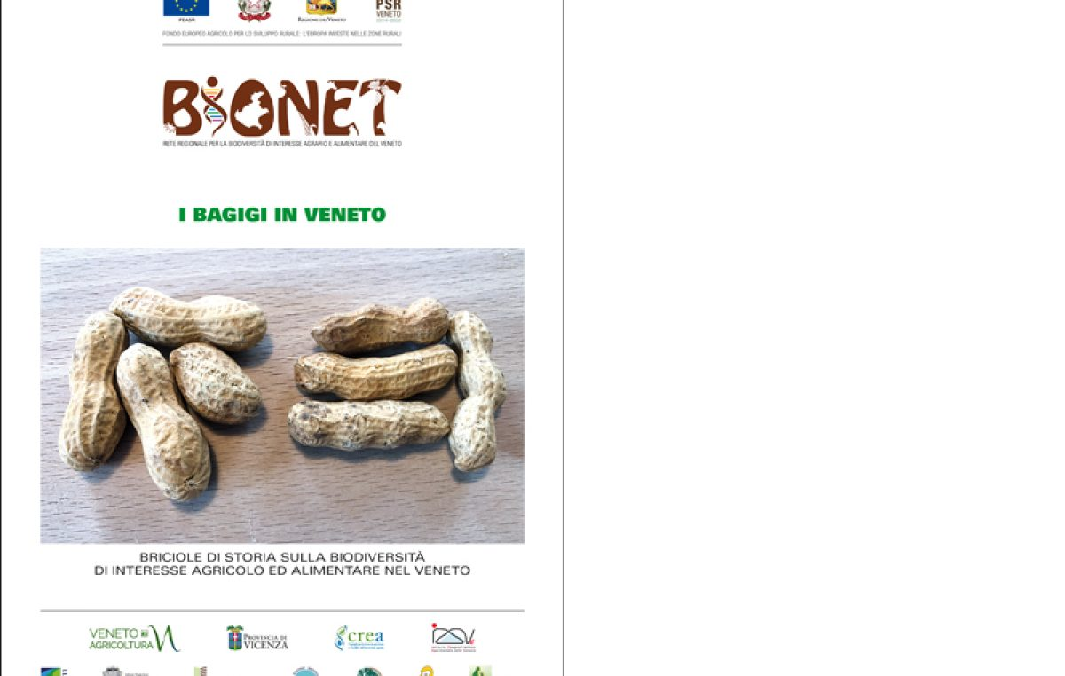 I bagigi in Veneto