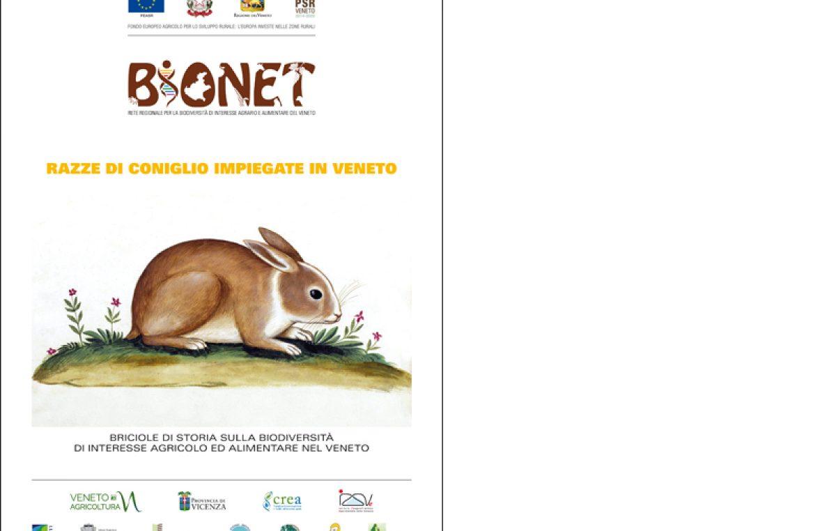 Razze di coniglio impiegate in Veneto
