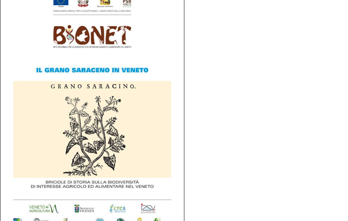 Il grano saraceno in Veneto