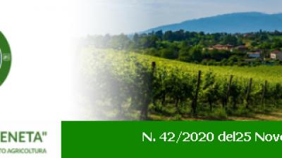 """AGRICOLTURA VENETA"" N. 42/2020 DEL 25/11/2020"